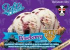 00788a Blueberry Waffle Cone HG